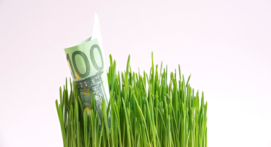 Greenwashing, regulation and sustainable investment
